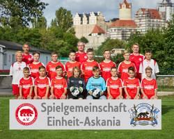 Mannschaftsfoto - D1-Junioren - Saison 2020/21